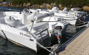 Outboard motors in boat rental