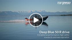 Video Deep Blue
