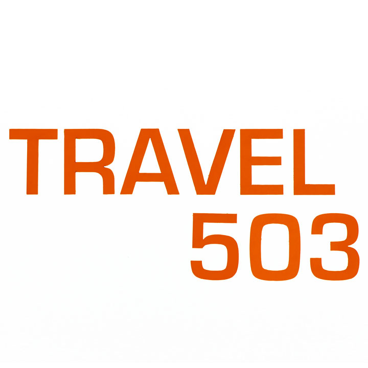 "Torqeedo Sticker ""T503"" 2017"